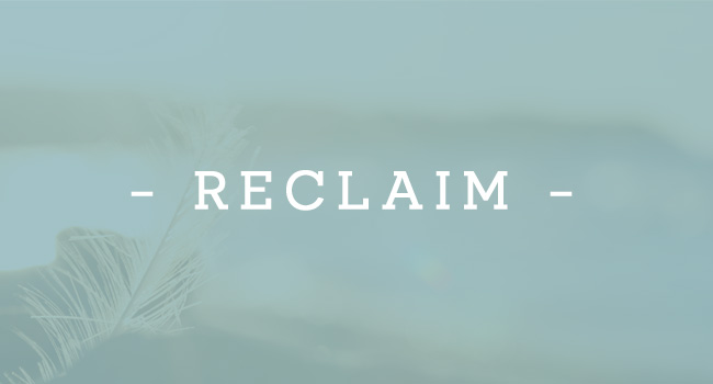 project-theme-reclaim