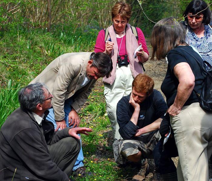Surveying_wildlife